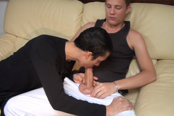 Porno Gay Adulte - Video Tlcharger DVD VOD imineo