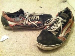 vans destroys