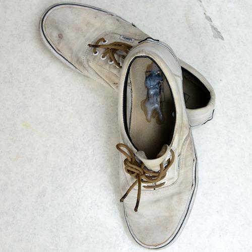 ejaculation-skater-vans (1)